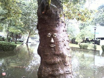 Friendly Tree