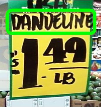 Typo Dandeline